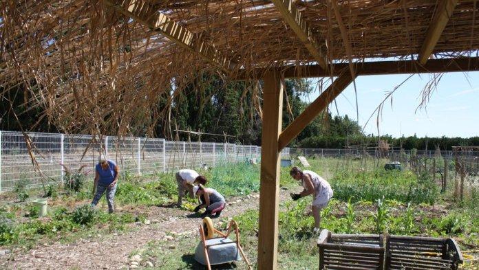 """L'association solérienne « Pyrénées Nature"""" récompensée pour son implication dans la protection de l'environnement"""