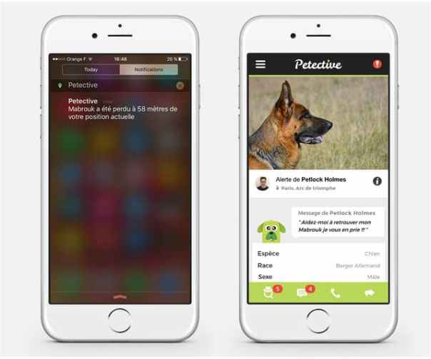 petective-application-recherche-animaux-solidaire