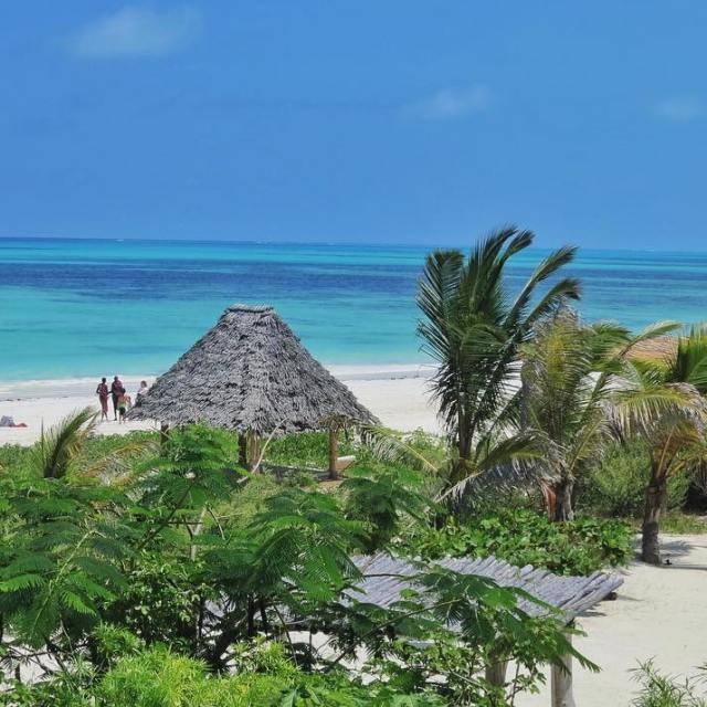 Zanzibar un archipel fabuleux embaum de parfums dpices et bordhellip