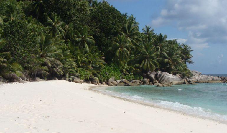 Trois bonnes raisons de visiter l'île de Félicité