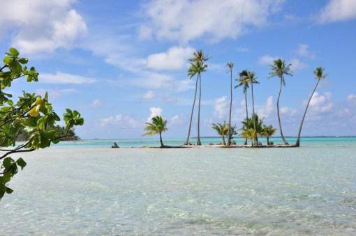Tahaa Island 12