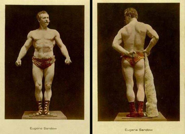 muscles-culturisme