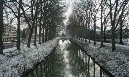 Toulouse : le Plan Grand froid prolongé