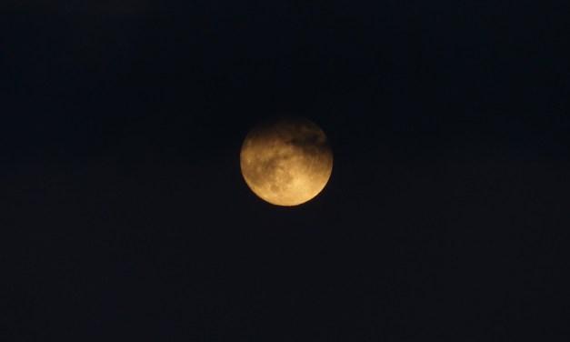 Pas visible à Toulouse, la «super Lune bleu de sang» a sublimé le ciel cette nuit