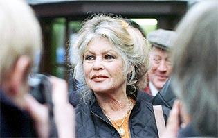Protection animale : Brigitte Bardot « engueule » Emmanuel Macron