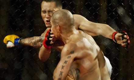 Légalisation du MMA : en quoi consistent les arts martiaux mixtes ?