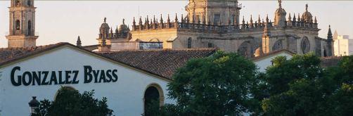Gonzales Byass - lea and sandeman independent wine merchants