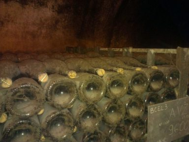 Bollinger Cellar