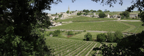 The Vineyard of La Clotte,  right at the gates of St Emilion