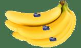 bananeDS