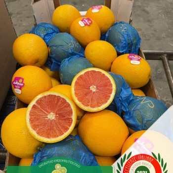Leader-Frutta-Giarre (84)