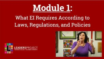 Critical Questions for the Parent Interview Part 1 (DDPE