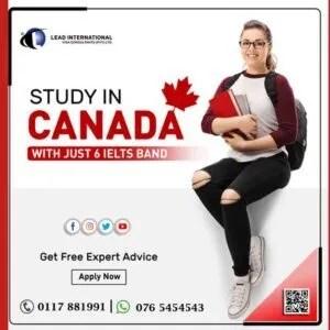 Undergraduate Courses in Canada