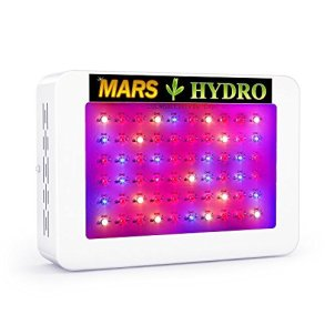 Mars hydro Led Grow Light Review