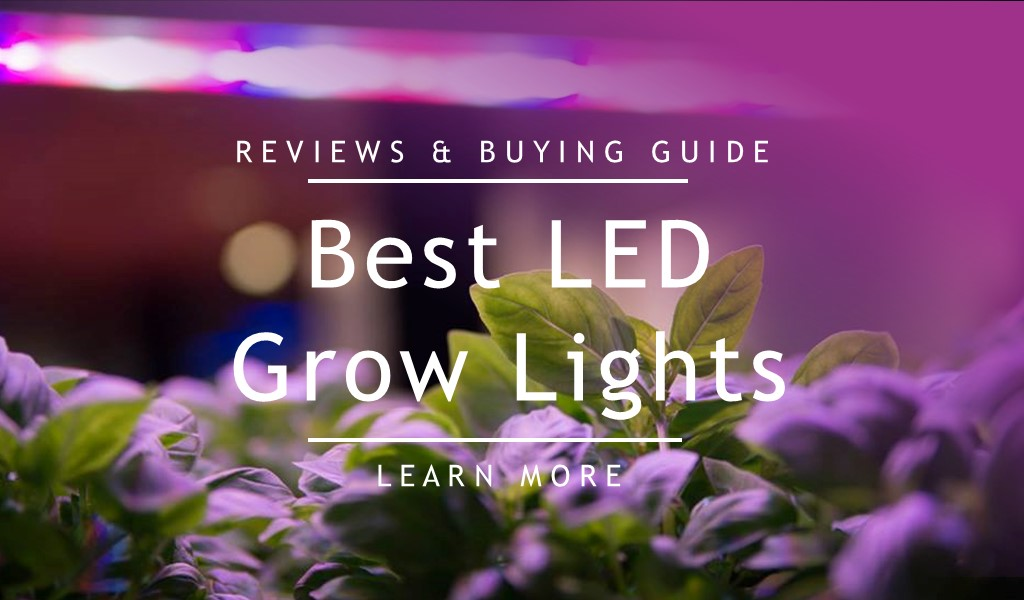 best led grow lights comparison for the money
