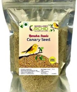 Buy canary Seeds Online