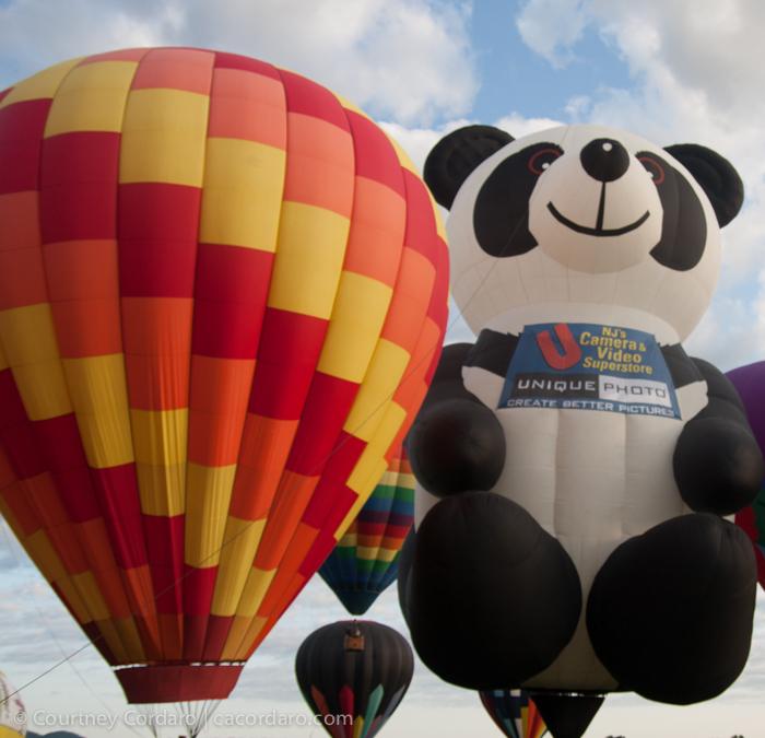 Readington_Balloon_Festival-2014-052-Blog Resized