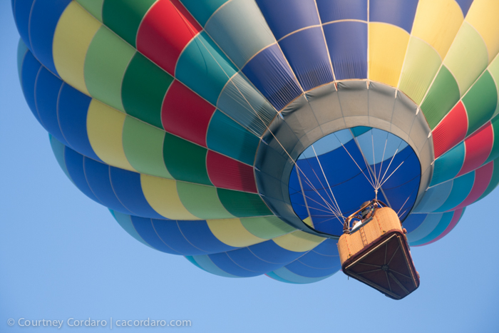 Readington_Balloon_Festival-2014-300-Blog Resized