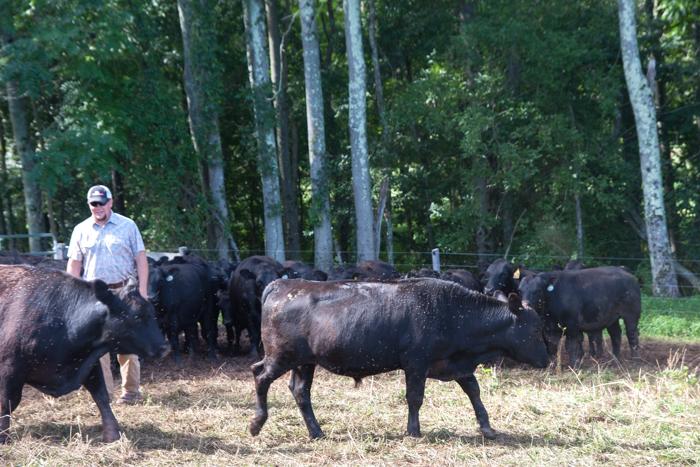 Profeta_Farms-Tour-014-Blog Resized