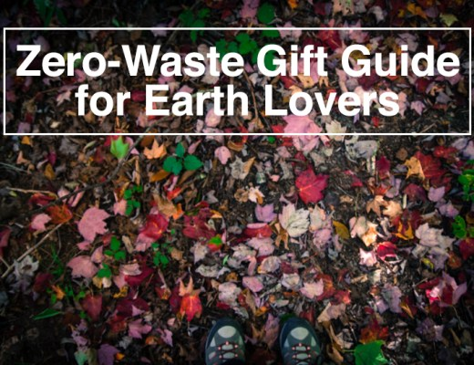 Zero-Waste Gift Guide for Earth Lovers