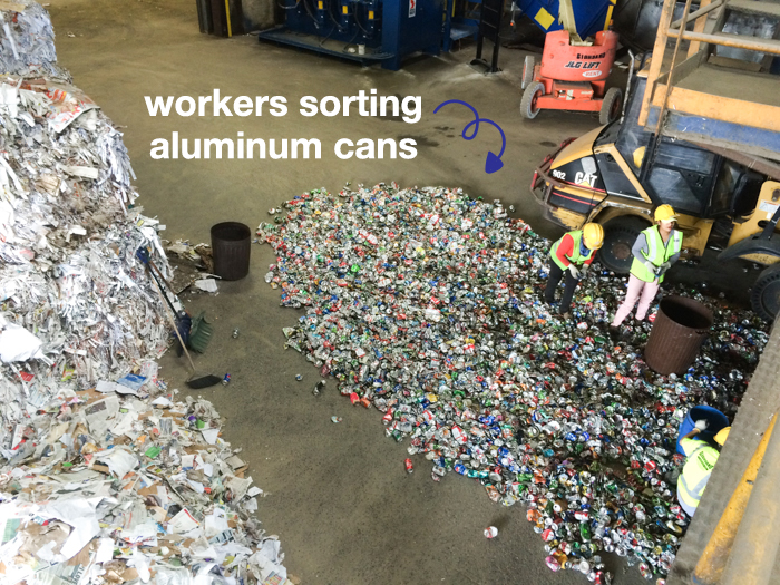 Workers sorting aluminum cans