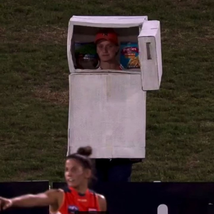 fridge costume giants womens