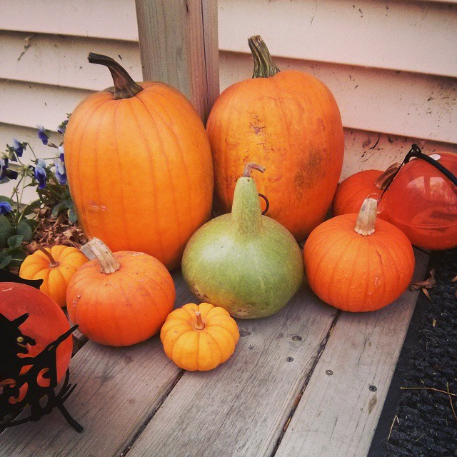 Fall!  I do miss me some seasons.
