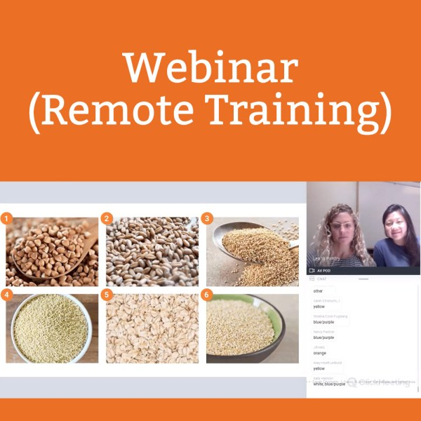 Webinar (Remote Training)
