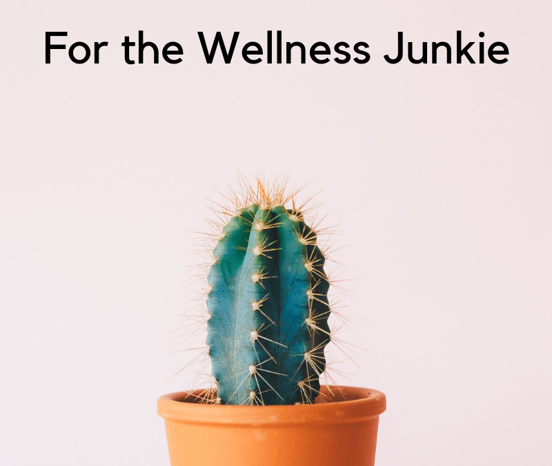 The Wellness Junkie Holiday Gift Guide!