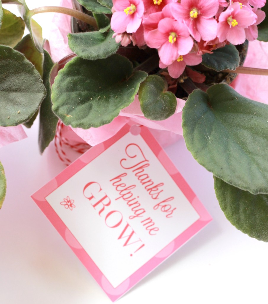 Thank You For Helping Me Grow Free Printable Tags Leah With Love