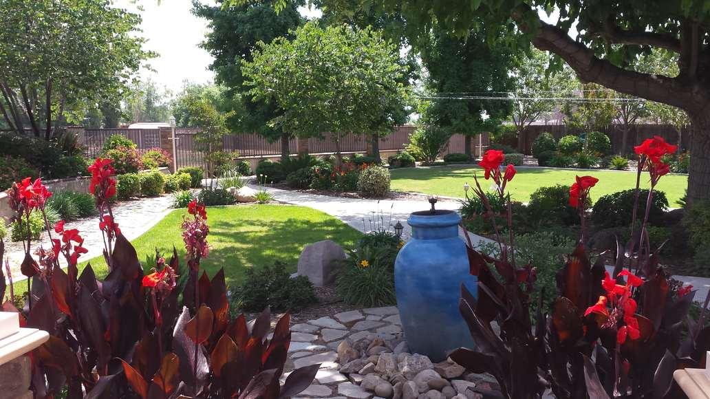 Leaning Oak Ranch Yard-min