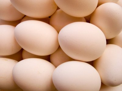 My five favourite protein sources