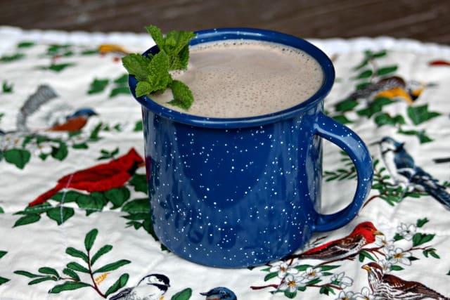 herbal hot chocolate hort