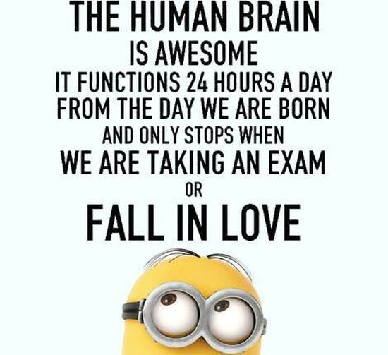 best-exam-quotes-Minions-Quotes-and-picture