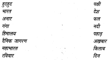 NCERT Solutions for Class 4 Hindi Chapter 13 हुदहुद 3
