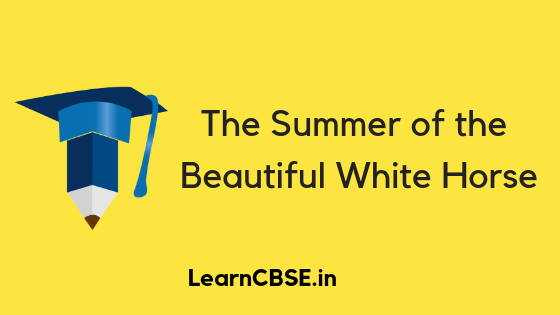 NCERT Solutions For Class 11 English Snapshots The Summer of the