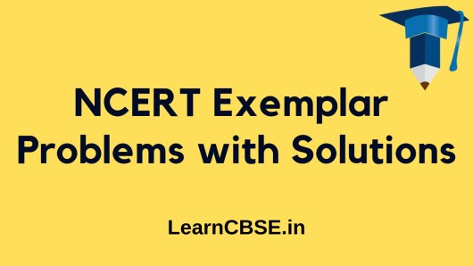 NCERT Exemplar Solutions for Class 6, 7, 8, 9, 10, 11, and 12