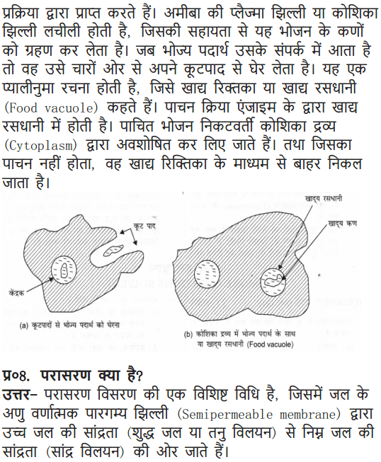 NCERT Solutions for Class 9 Science Chapter 5 The Fundamental Unit of Life Hindi Medium 7