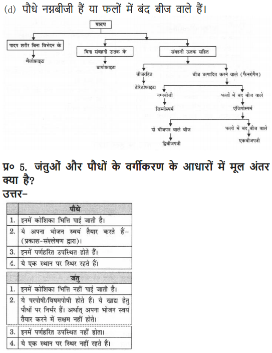 NCERT Solutions for Class 9 Science Chapter 7 Diversity in Living Organisms Hindi Medium 12
