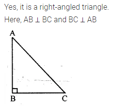 ML Aggarwal Class 7 Solutions for ICSE Maths Chapter 11 Triangles and its Properties Ex 11.1 8