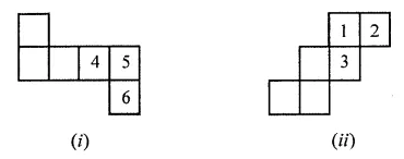ML Aggarwal Class 7 Solutions for ICSE Maths Chapter 15 Visualising Solid Shapes Ex 15.1 7