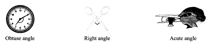 Maharashtra Board Class 6 Maths Solutions Chapter 2 Angles Practice Set 2 4