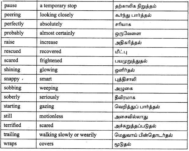 Tamilnadu Board Class 9 English Solutions Prose Chapter 3 Old Man River - 14