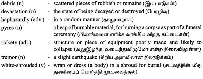 Tamilnadu Board Class 9 English Solutions Supplementary Chapter 3 Earthquake - 4
