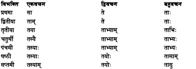 Shabd Roop - शब्द रूप, Sanskrit Shabd Roop 6