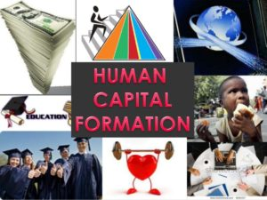 what is human capital state in India