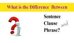 Clause, Phrase and Sentence Differences