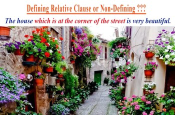 Differences Between Defining and Non-Defining Relative Clauses