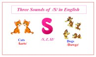 Sounds of the Plural –S in English