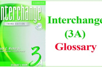 Interchange 3A Glossary